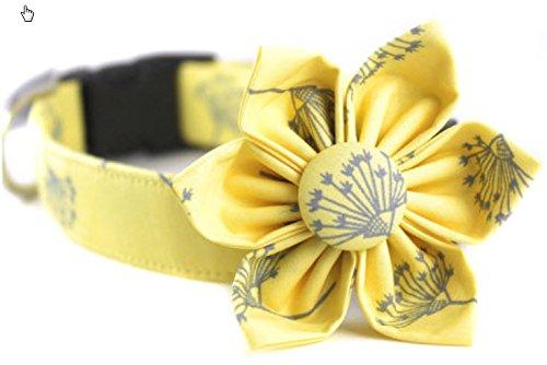 Collar and Flower Set Dandelion Dream