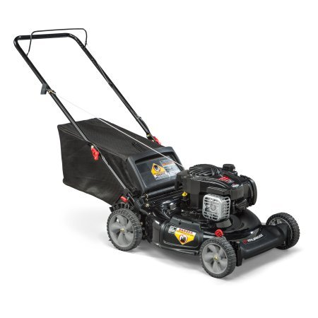 Murray 21 Gas Push Lawn Mower with Side Discharge, Mulching, Rear Bag