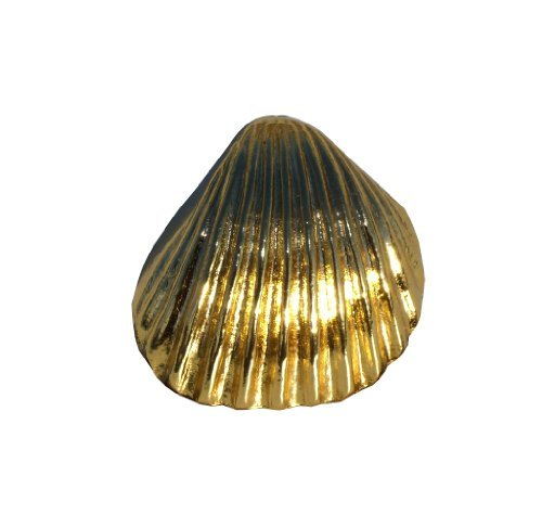 Solid Brass Seashell (1 x Deluxe 48mm cockle seashell knob in a polished brass plated gold effect solid metal handle by Swish.. by Swish)