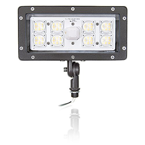 400 Watt High Pressure Sodium Flood Light Fixture