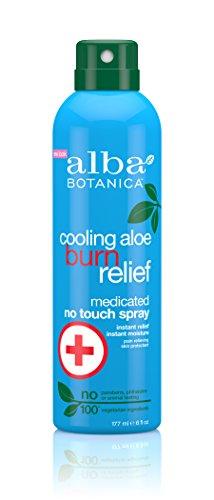 Aloe Spray Sunburn Relief Cooling (Alba Botanica Cooling Aloe Burn Relief Medicated No Touch Spray, 6 Ounce)