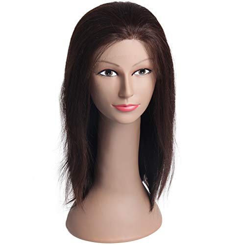 Jiayi Straight Human Hair Wigs Lace Front Wigs Glueless Lace Wigs for African Americans (16Inches, 2# Brown - Wig Human 3/4 Hair