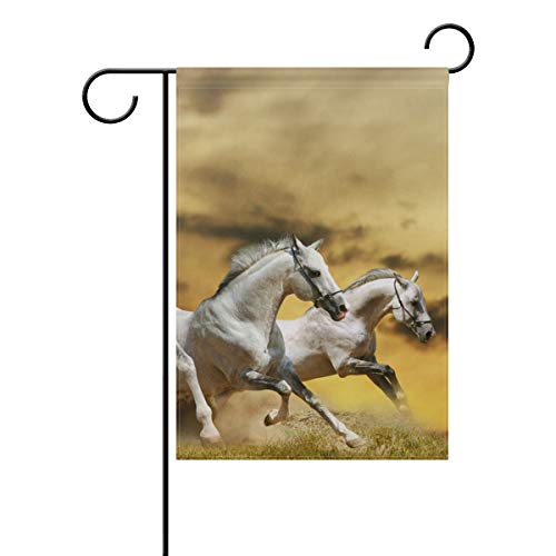 Double Joy Freedom Horse Race Grass Dust Sky 28x40 Inch Modern Home Garden Yard ()