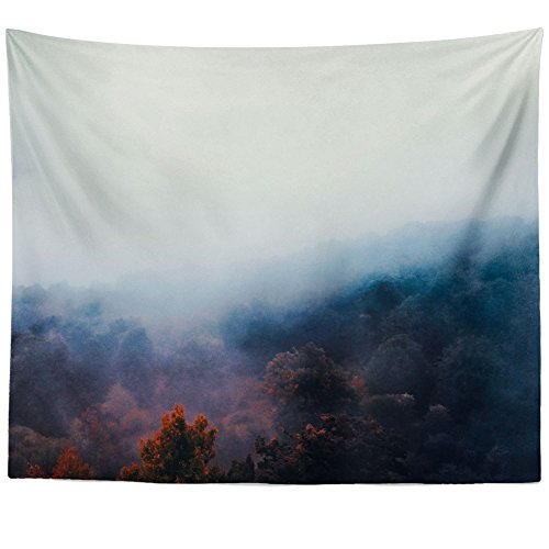 Westlake Art Wall Hanging Tapestry - Mist Sunrise - Photography Home Decor Living Room - 68x80in (a75z)