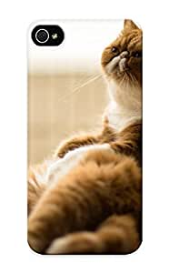 For Iphone Case, High Quality Cat Exotic For Iphone 6 plus 5.5 Cover Cases / Nice Case For Lovers