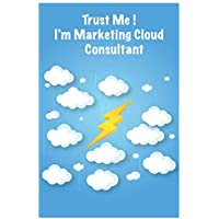 Trust Me ! I'm Marketing Cloud Consultant: Lined