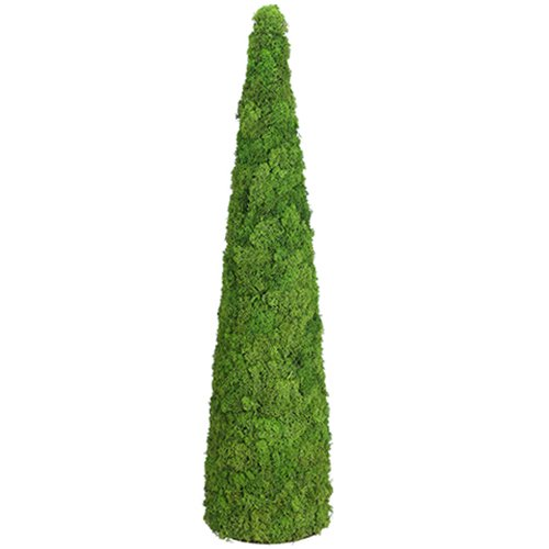Topiary Reindeer (SilksAreForever 4'Hx12 W Preserved Reindeer Moss Cone-Shaped Topiary -Green (Pack of 2))