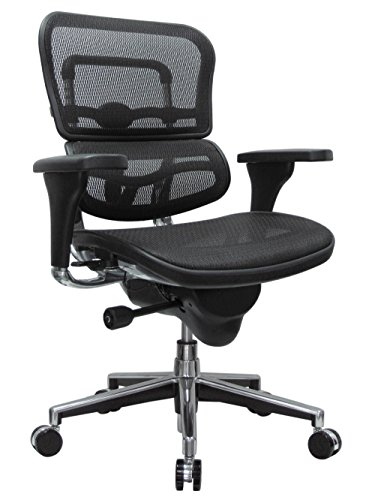 Eurotech Seating ME8ERGLO(N) Ergohuman Mid Back Mesh Swivel Chair, Black ()