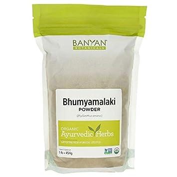 Banyan Botanicals Bhumyamalaki Powder - Certified Organic, 1 Pound - Phyllanthus amarus - Detoxifies and