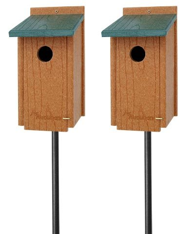 Audubon Premium Bluebird House Package with Poles