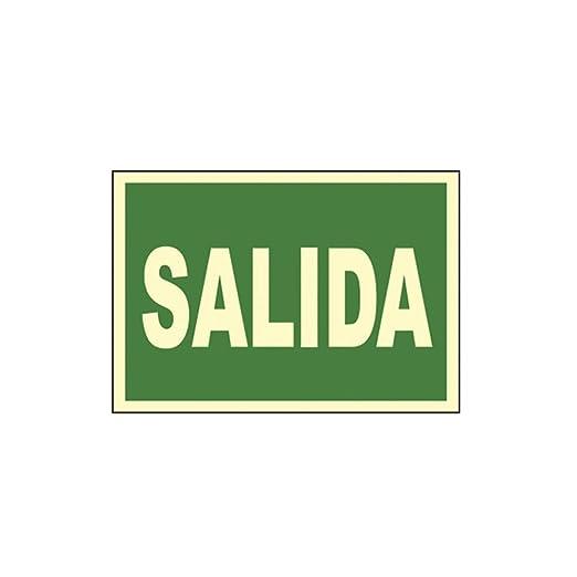 CARTEL SEÑAL SALIDA 30X21CM: Amazon.es: Iluminación