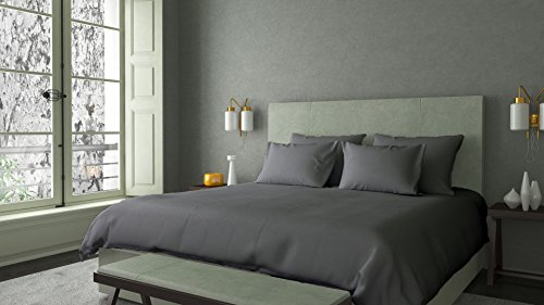 100% Organic Cotton Duvet Cover Set, GOTS Certified, Soft and Luxurious, 1 Duvet Cover, 2 Pillow Shams, 800 Thread Count, Made in USA, Eco Friendly Solid (King/Cal-King, Silver Grey) by AMERICANO EMPORIUM