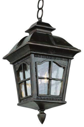 Transglobe Lighting Outdoor 1 Light Hanging Lantern in US - 7