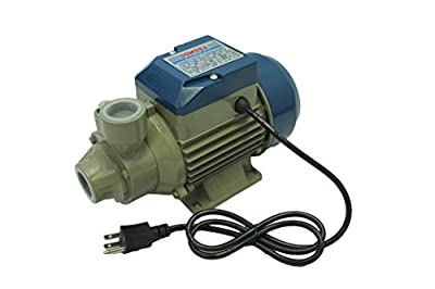 Electric Centrifugal Peripheral Power Clear Water Pump 0.5 1/2 Hp DP50 QB60 Pumping Garden House Pool Sprinkling Water Bundle Kit Filter and Check Valve