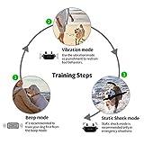 VINSIC Shock Collar for Dogs, Dog Training Collar