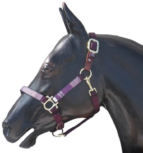 Kensington KPP Breakaway Halter Set with Padded Nose, Plum with Plum Ice Plaid, (Halter Ice)