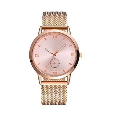 Amazon.com: Female Wristwatch Stainless Steel Elegant New ...