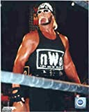 Photo Color Wrestling Hollywood Hulk Hogan