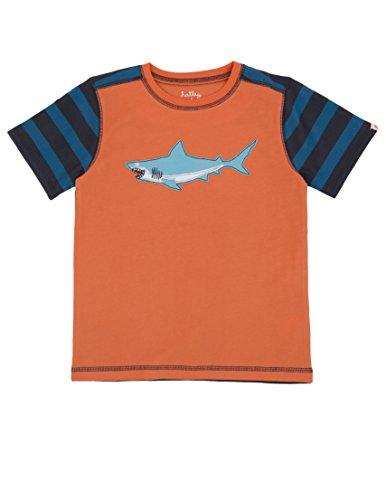 Hatley Little Boys Applique Shark