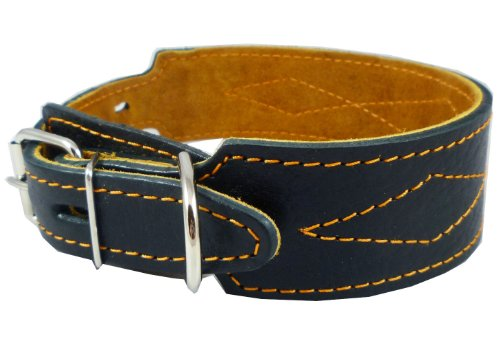 Real Leather Tapered Dog Collar 1.75