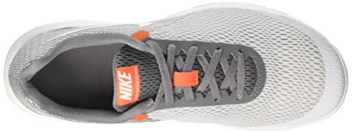 Nike Flex Experience Run 6 - Zapatillas de Entrenamiento Hombre Gris (Pure Platinum/white Cool Grey Orange Cha)
