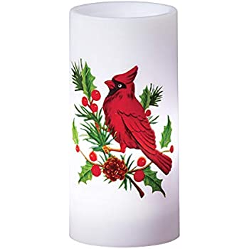 Amazon Com Christmas Festive Rotating Projection Candle Flameless Led Table D 233 Cor Cardinal Home Amp Kitchen