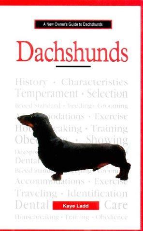 New Owner Guide to Dachshunds (JG Dog)