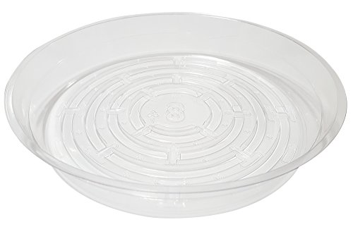 Clear Plant Saucers - 5 Pack of 8