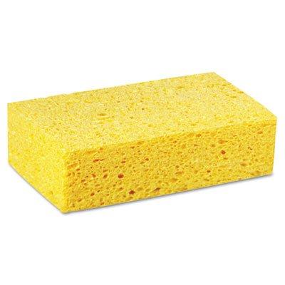 BWKCS3 - Boardwalk Large Cellulose Sponge