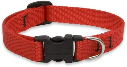 """NEW Red White and Blue America Dog Collar or Leash 1/"""" 3//4/"""" or 1//2/"""" by LupinePet"""