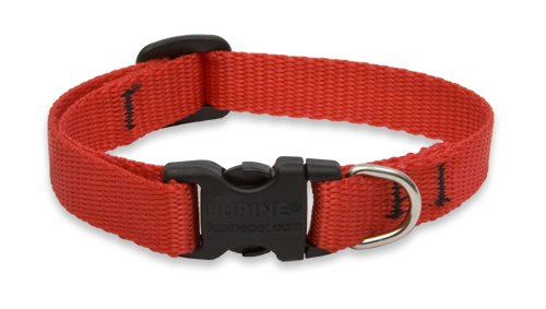 LupinePet Basics 1 2  Red 8-12  Adjustable Collar for Small Dogs