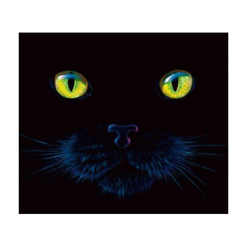 SunsOut Black Cat Face 550 Piece Jigsaw Puzzle ()