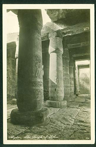 Cairo Egypt Abydos Temple of Sethos Real Photo RPPC Ancient Columns Postcard