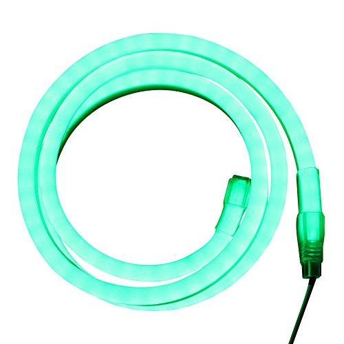 Neon Green Led Rope Lights in Florida - 9