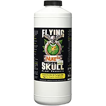 Image result for flying skull nuke em