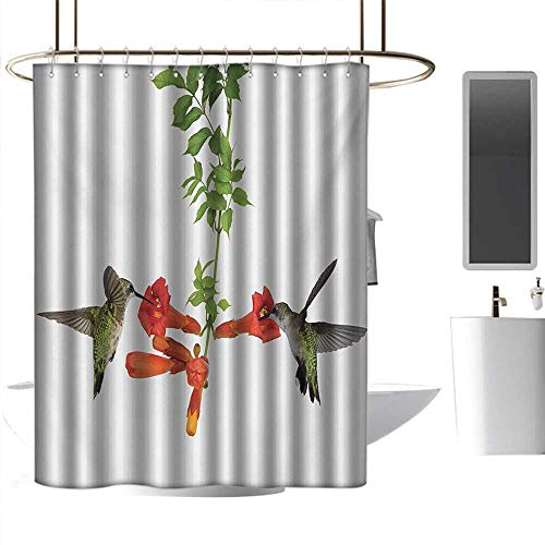 coolteey Shower Curtains Lavender Hummingbirds,Two Hummingbirds Sipping Nectar from a Trumpet Vine Blossoms Summertime,Red Black Green,W48 x L84,Shower Curtain for Kids