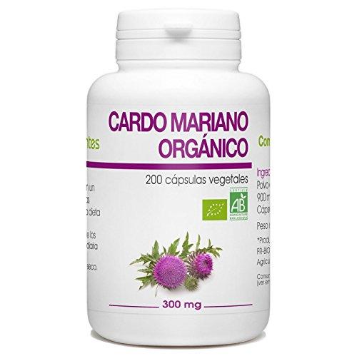 Cardo Mariano Organico - Silybum marianum - 300mg - 200 capsulas vegetales