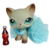 Gigi lps Short Hair Cat #391 Gray Short Hair Cat Blue Eyes Kitty Magnet Foot and Clear Peg Figures Kids Gift