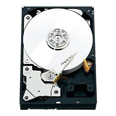Western Digital RE Enterprise Hard Drive: 3.5 Inch, 7200 RPM, SATA III, 64 MB Cache