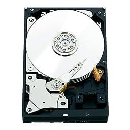 WD RE 2 TB Enterprise Hard Drive: 3.5 Inch, 7200 RPM, SATA III, 64 MB Cache (WD2000FYYZ) (Old Model)