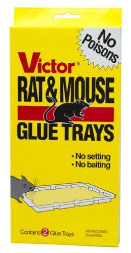 Victor Rat Glue Tray M174 Sticky Trap