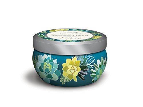 (Studio Oh! Travel Tin Hand-Poured Scented Candle Available in 9 Fragrances, Spearmint &)