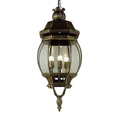 Transglobe Lighting Outdoor 1 Light Hanging Lantern in US - 4