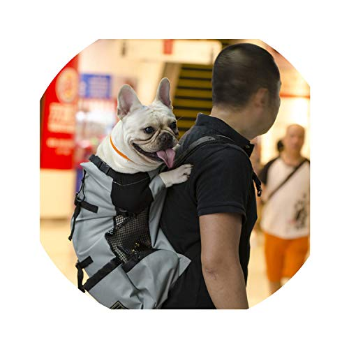 (ZZmeet Adjustable Pet Dog Outdoor Travel Backpack for Hiking Riding Reflective Dog Carrier Bag for Dogs French Bulldog Carrying Bags,Blue,M)