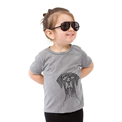 (Mattis The German Shorthaired Pointer Dog Youth Unisex Boy Girl Kids Crewneck Youth Medium Grey)