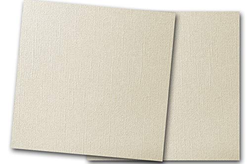 - Premium Pearlized Metallic Textured Dove Ivory Card Stock 20 Sheets - Matches Martha Stewart Dove - Great for Scrapbooking, Crafts, Flat Cards, DIY Projects, Etc. (12 x 12)