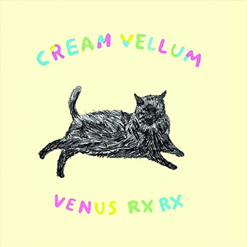 Dashing Boy - Vellum Boy