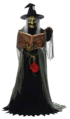 Morris Costumes Spell Speaking Witch Animated -
