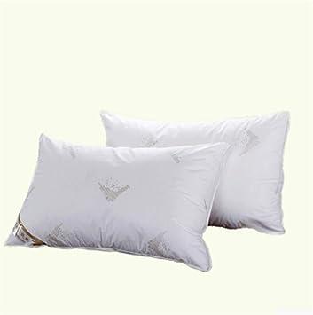 XZDXR Funda de almohada almohada antibacterial anti-ácaro almohada terciopelo almohada algodón algodón estereotipo estereotipo par (2) 48 * 74 cm: Amazon.es: Bebé