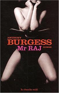Mister Raj : roman